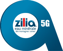 logo-zilia-5g-footer